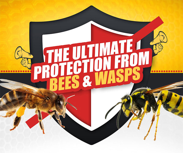 protection-from-bees-vs-wasps-infographic-plaza-thumb