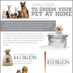 rsz_pet-grooming-infographic