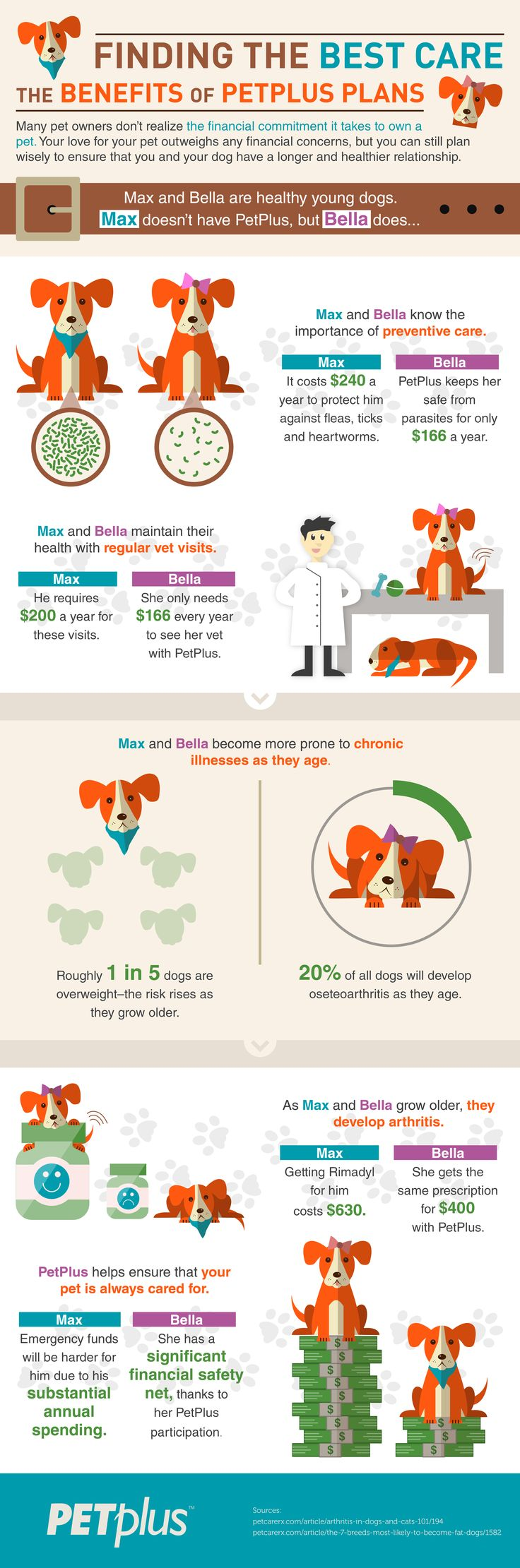 save-money-pet-care-infographic