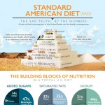 standard-american-diet-infographic-plaza
