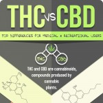 thc-vs-cbd-infographic-plaza