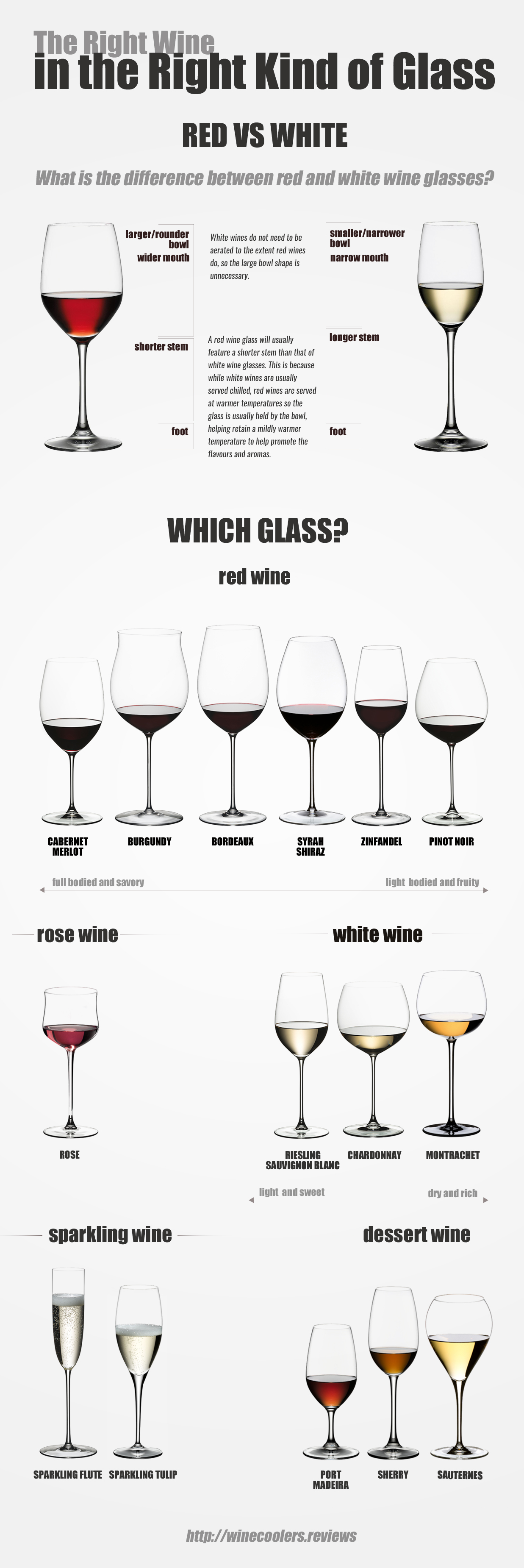 Know Types Of Wine Glasses