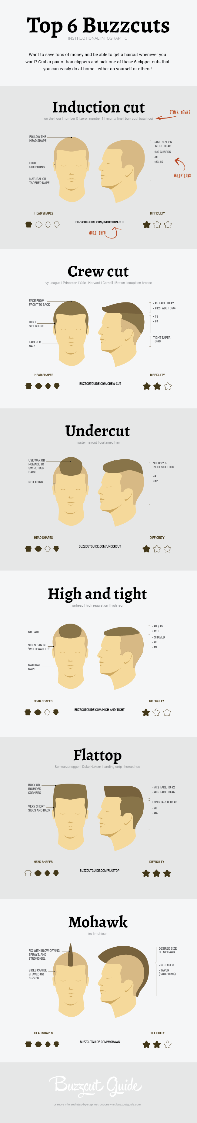 top-buzzcuts-infographic