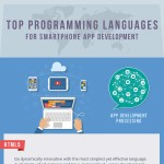 top-programming-language-infographic-plaza
