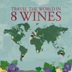 travel-world-in-8-wines-infographic-plaza