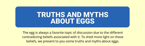 truths-and-myths-about-eggs-infographic-plaza-thumb