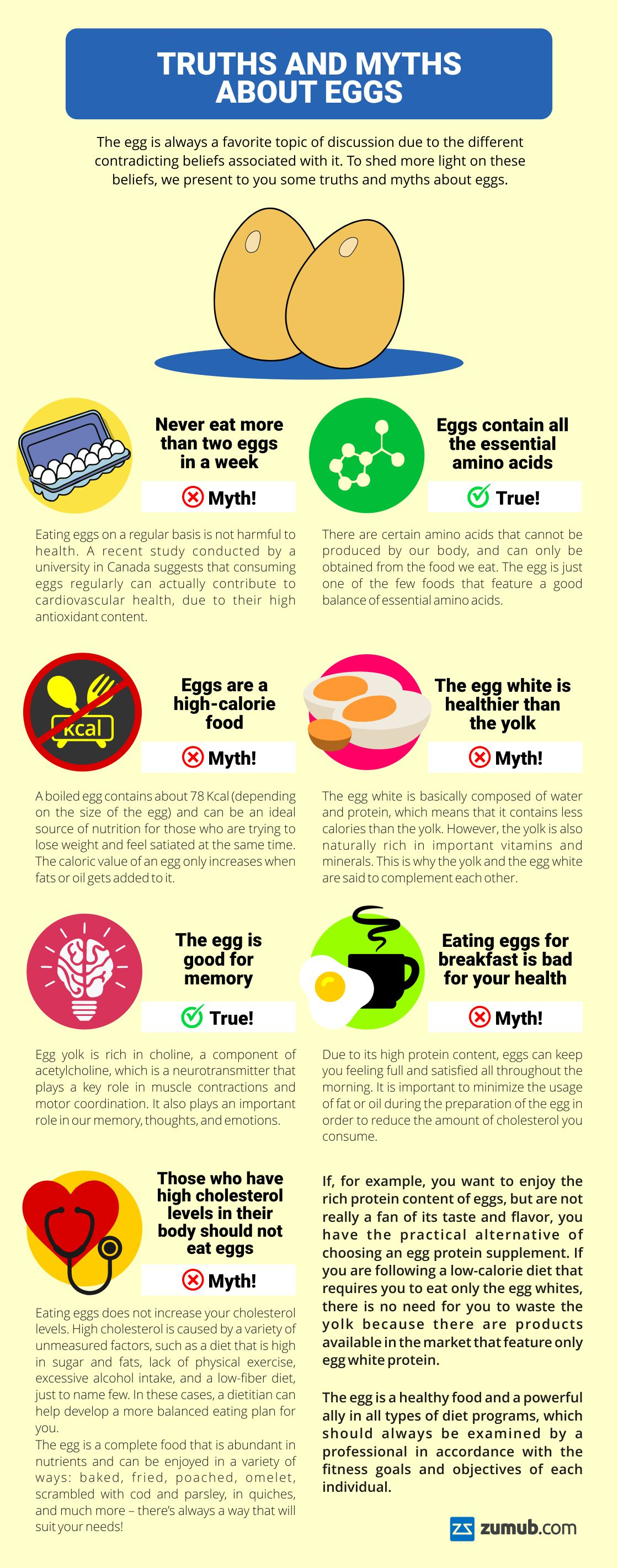 truths-and-myths-about-eggs-infographic-plaza