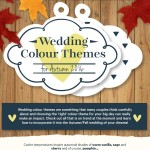 wedding-color-themes-infographic-plaza