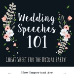 wedding-speeches-101-infographic-plaza