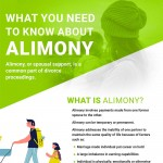 what-know-about-alimony-infographic-plaza