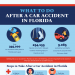 what-to-do-after-a-car-accident-in-florida-infographic-plaza