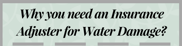 why-you-need-an-insurance-adjuster-for-water-damage-infographic-plaza-thumb